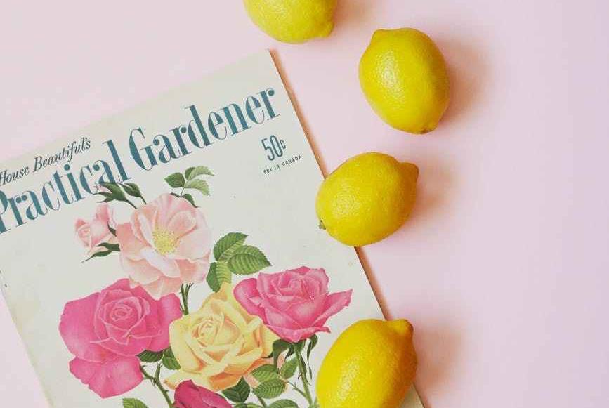magazine on light pink table beside four lemons
